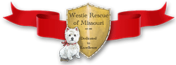 Westie Rescue of Missouri